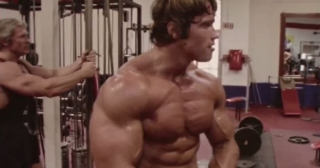 What arnold schwarzeneggers classic bodybuilding diet looked like arnie2 malvernweather Gallery