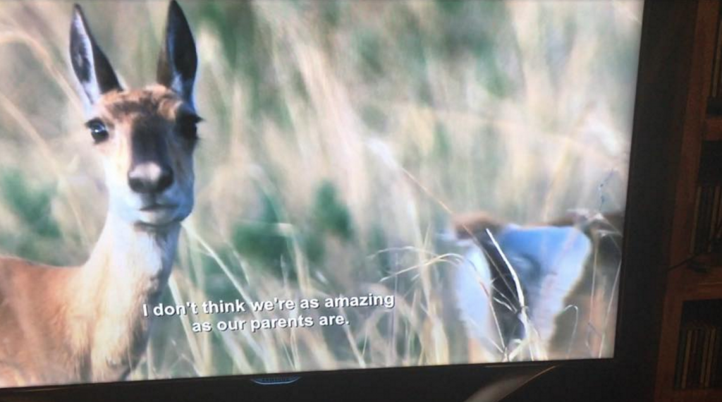 Netflix played a comedian's subtitles over a nature documentary and