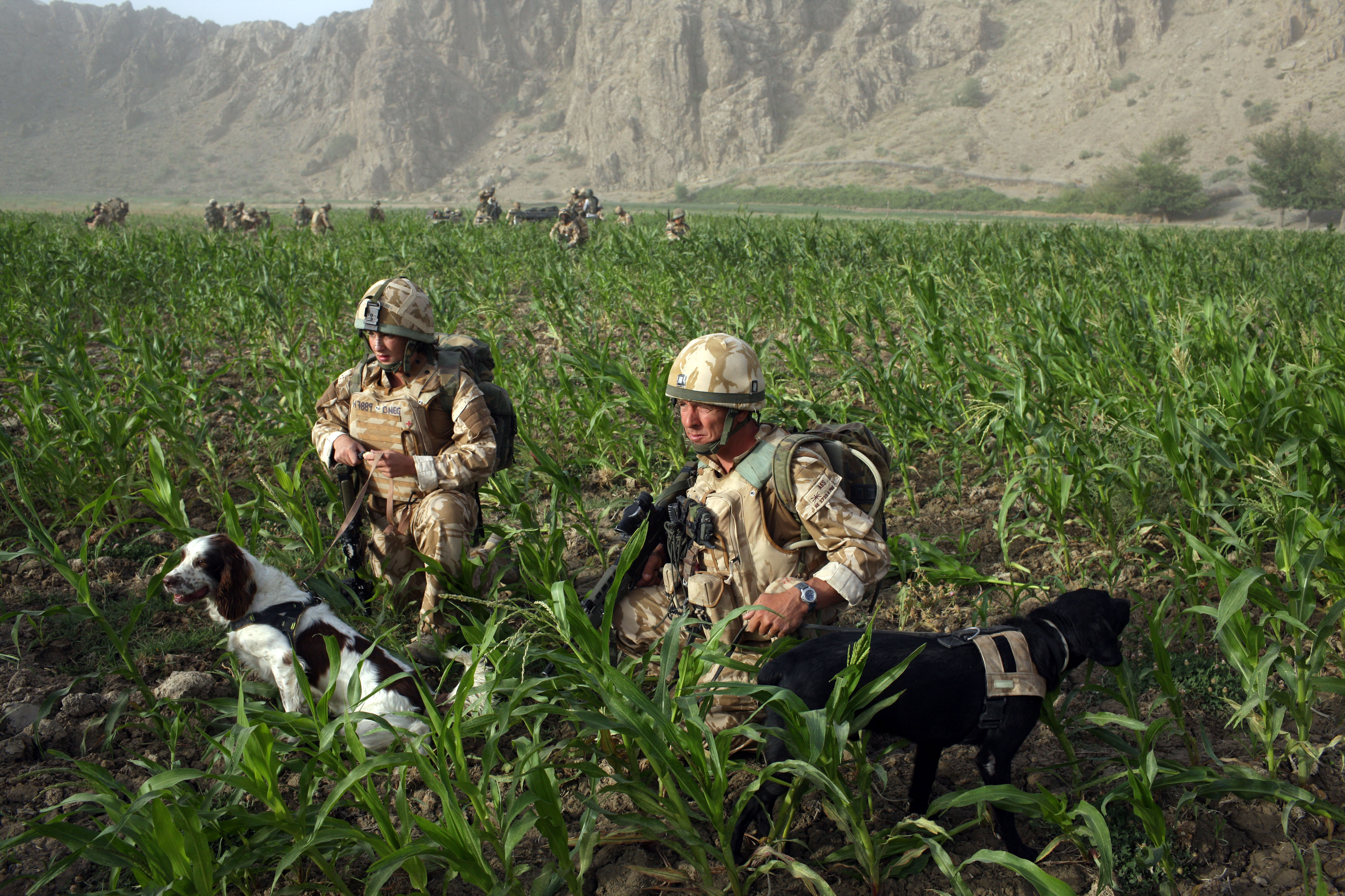 Are British soldiers still in Afghanistan? Heres three