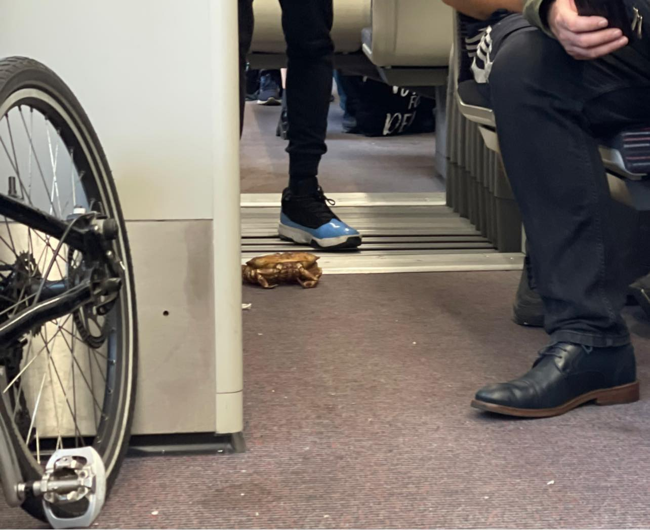 A crab on the train to Southend